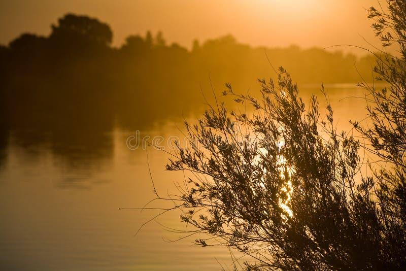 Nascer do sol sobre o rio de sacramento imagens de stock royalty free