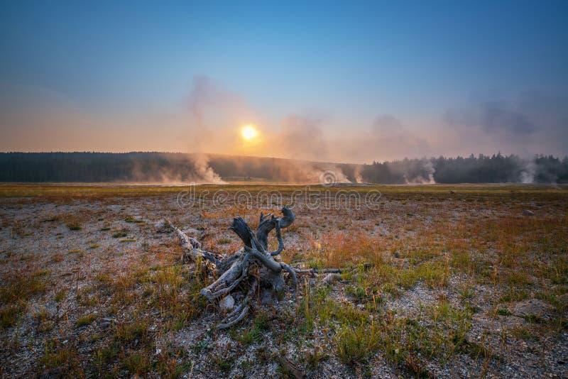 Nascer do sol sobre um campo úmido no parque nacional de Yellowstone fotografia de stock