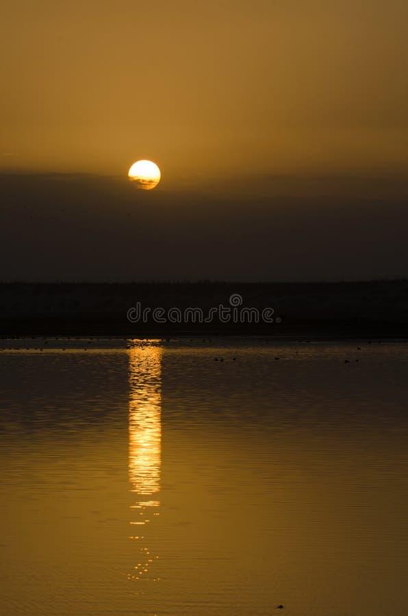 Nascer do sol sobre um lago imagens de stock