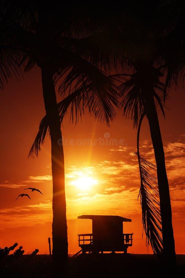 Nascer do sol sul da praia de Miami com torre da salva-vidas fotografia de stock royalty free