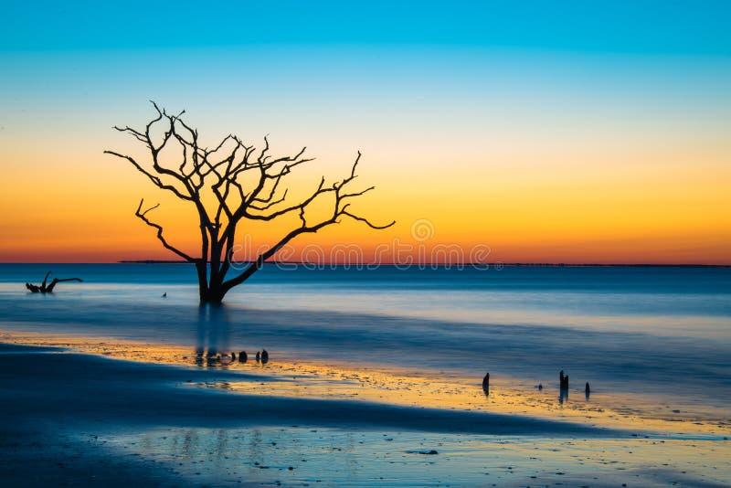 Nascer do sol surreal na baía da Botânica foto de stock