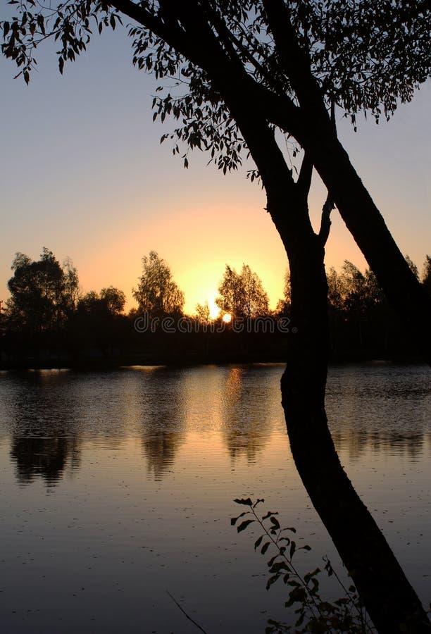 nascer do sol vermelho no lago imagem de stock