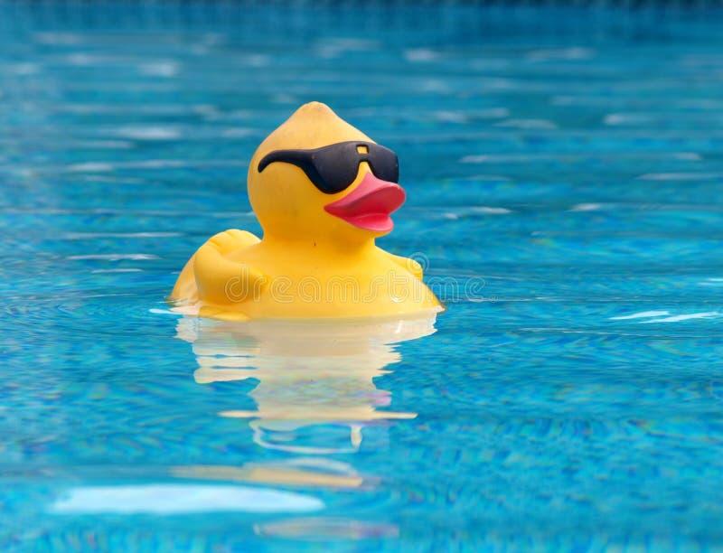 Nascimento do pato de borracha fotografia de stock