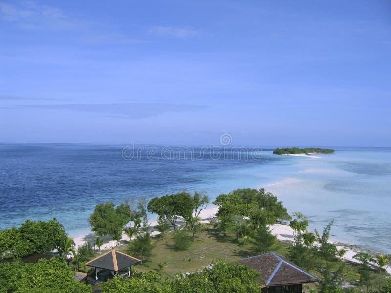 Download Nascita immagine stock. Immagine di isola, presidenze, malaysia - 221357