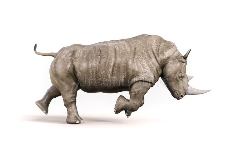 Nashorn auf weißem Hintergrund lizenzfreie abbildung