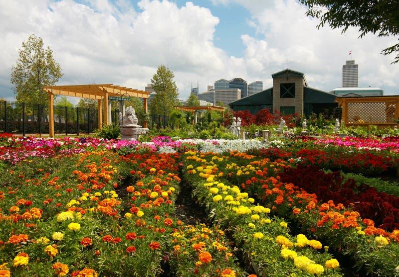 Nashville van de binnenstad dat van de Markt van Landbouwers wordt gezien stock foto's