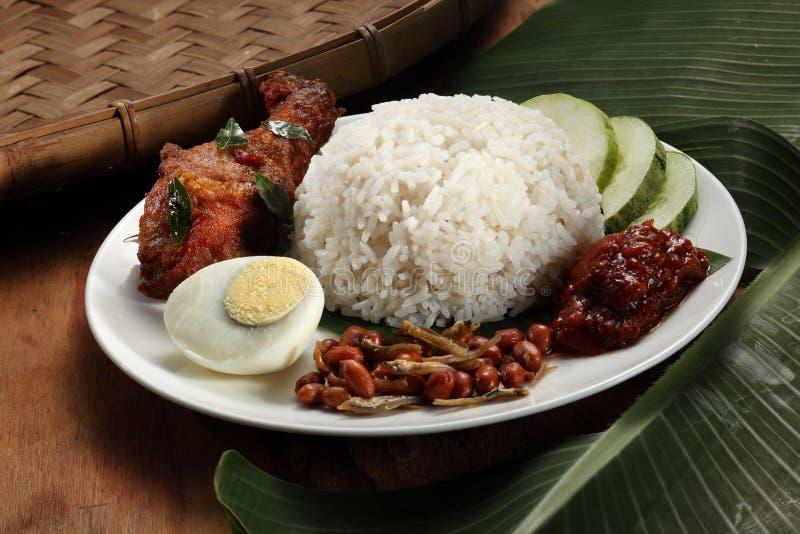 nasi lemak стоковая фотография rf