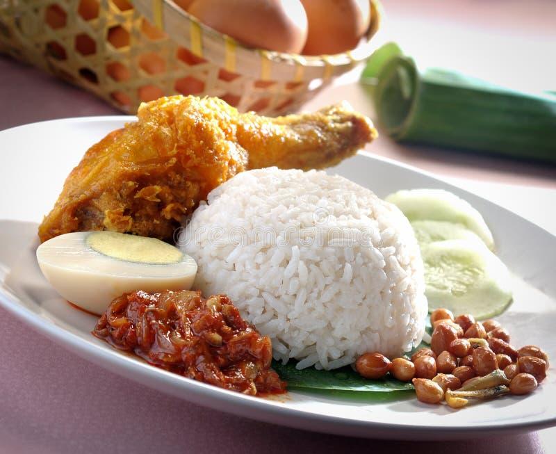 Nasi lemak stock foto