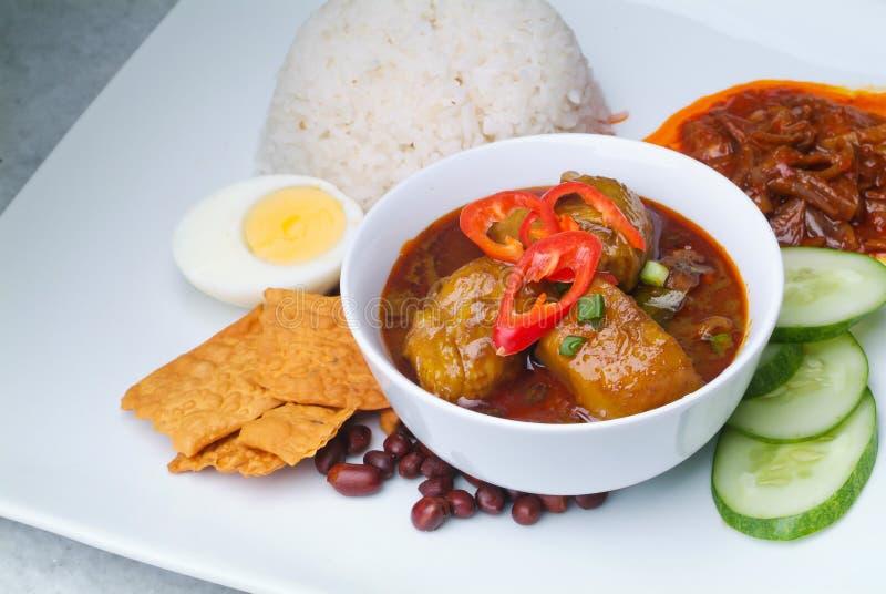 Download Nasi lemak stock photo. Image of nasi, background, cuisine - 24088056