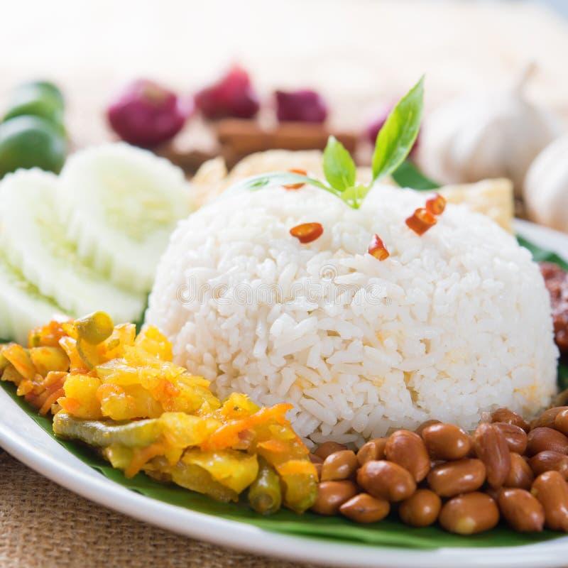 Download Nasi lemak stock image. Image of close, culture, cucumber - 43446181