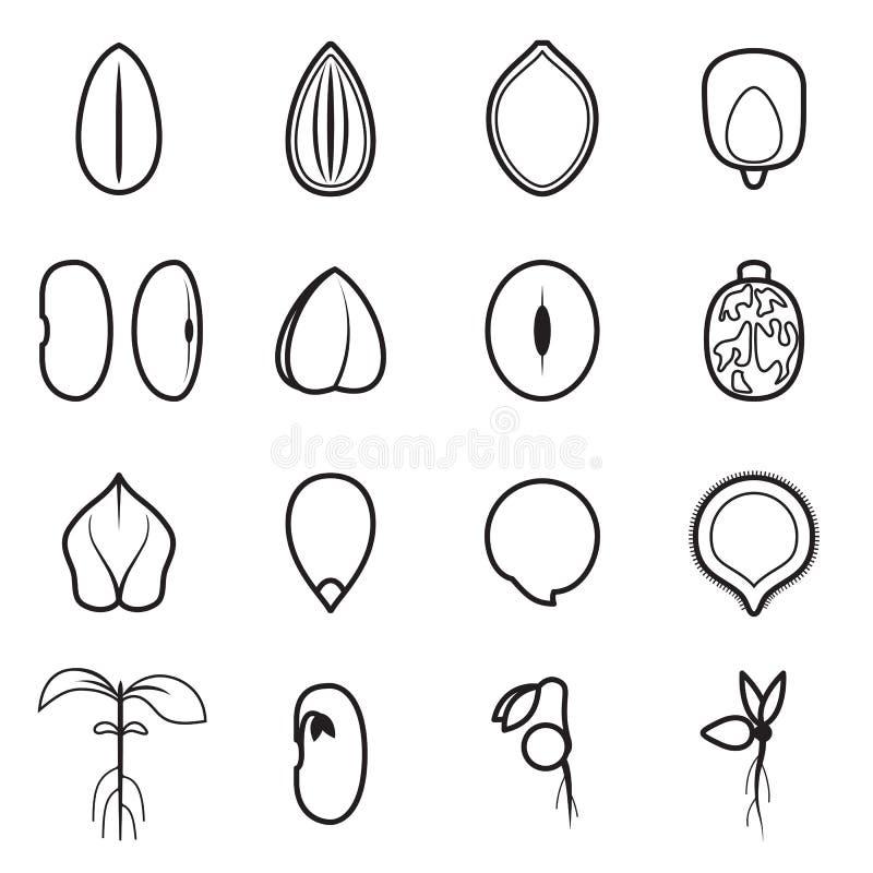 Nasieniodajny ikona set który reprezentuje pospolitych typ upraw ziarna, royalty ilustracja