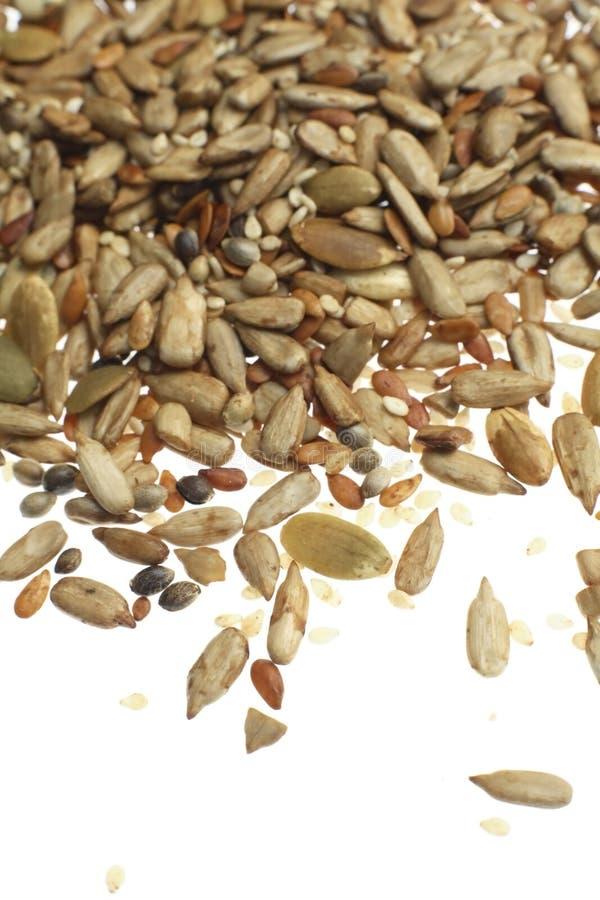 nasiona mieszanych zdjęcia royalty free