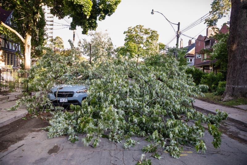 Nasleep van massieve stortbui op het Bijlagegebied in Toronto stock foto