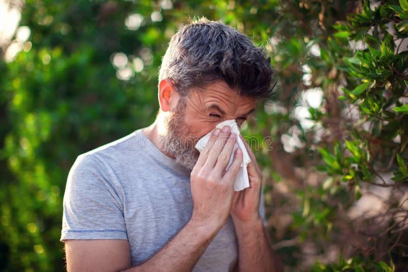 Naso di salto dell'uomo davanti all'albero di fioritura Concetto di allergia della primavera fotografia stock