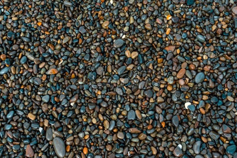 Nass Kiesel auf dem Strand an einem Sommertag, Hintergrund stockfotografie