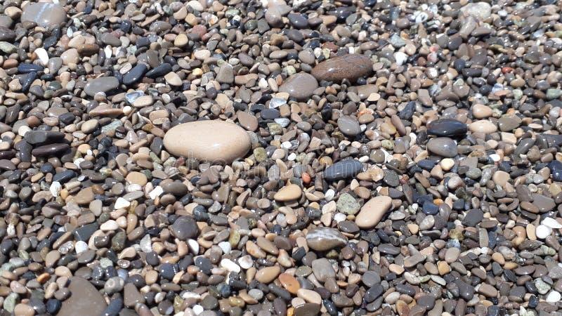Nass Steine auf dem Strand an einem Sommerabend stockfoto