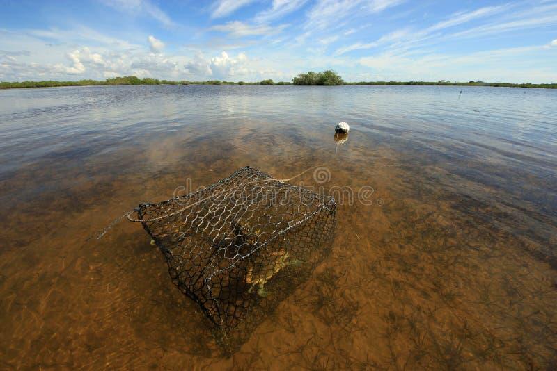 Nassa per granchi con il granchio nel suono di Barnes, Florida immagini stock libere da diritti