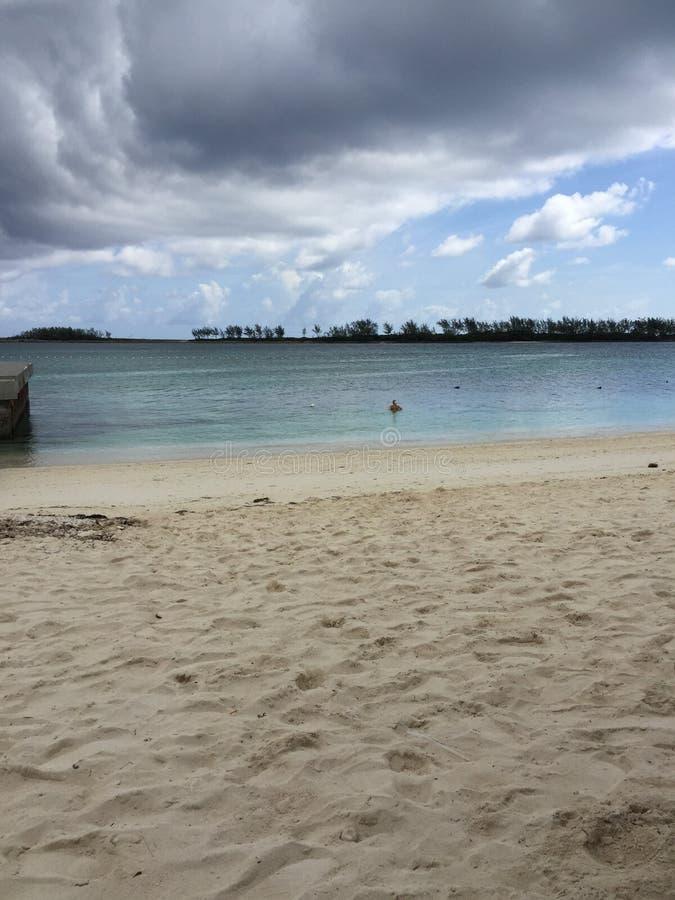 2017 Nassau de Bahamas het Westelijke Esplande Strand Zwemmen stock foto's