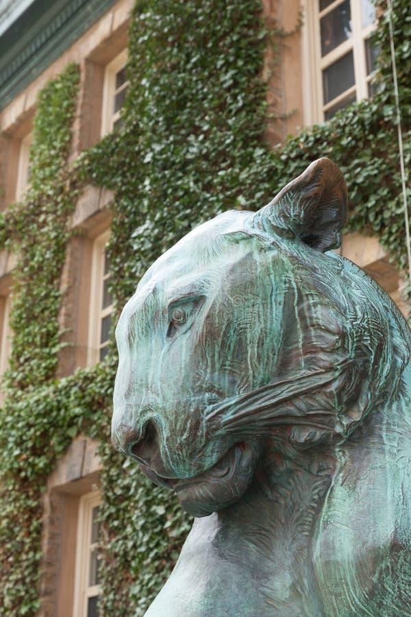 Nassau Hall Tiger stock foto