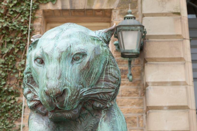 Nassau Hall Tiger royalty-vrije stock foto