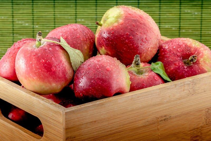 Nasse Äpfel der Nahaufnahme in einer Bambuskiste auf grünem Hintergrund lizenzfreie stockfotografie