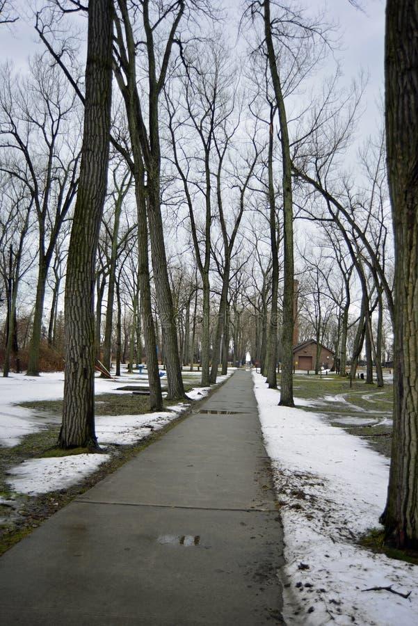 Nasse Bahn gestaltet durch schlafende Bäume nach neuem Schneefall stockfotos