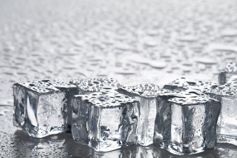 Nasse Eiswürfelnachrichten lizenzfreies stockbild