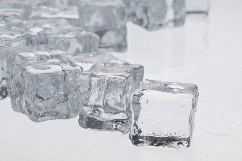 Nasse Eiswürfelnachrichten lizenzfreies stockfoto