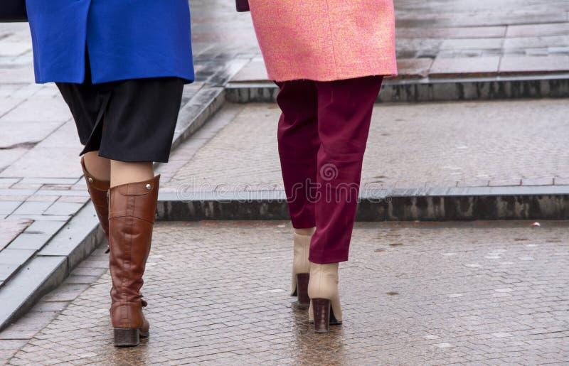 Nasser Asphalt, Schritte und die Füße der Frauen auf dem Hintergrund der Schritte lizenzfreies stockbild