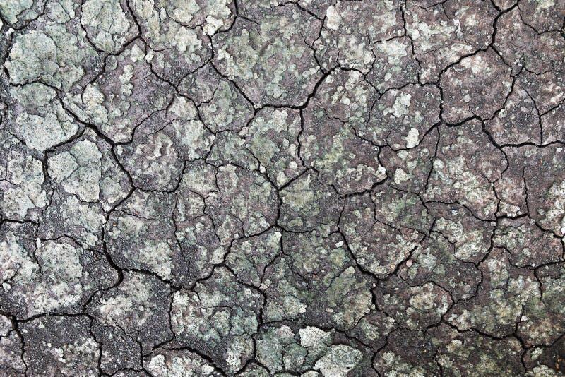 nasser gebrochener Boden für Muster und Hintergrund stockfoto