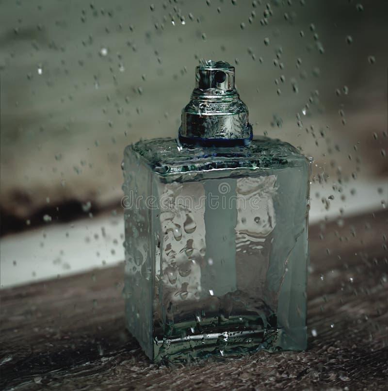 Nasses Parfüm lizenzfreies stockbild