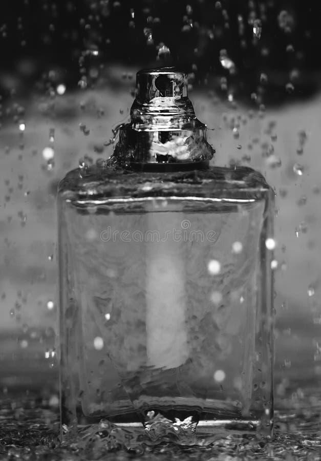 Nasses Parfüm lizenzfreie stockbilder