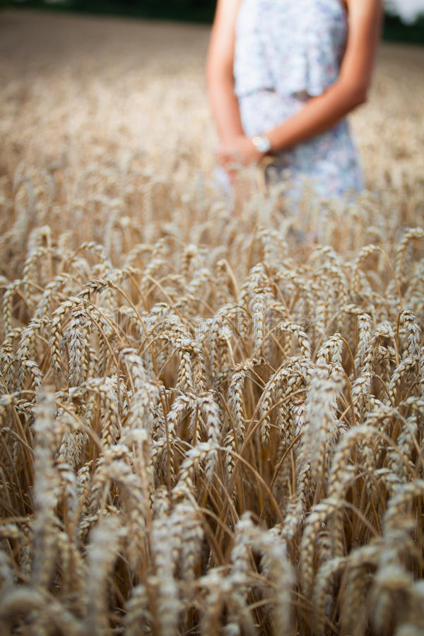 Nastolatek dziewczyna przy pszenicznym polem fotografia stock