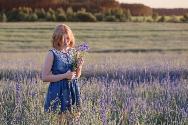 nastolatek dziewczyna w lata polu z chabrowym obrazy stock