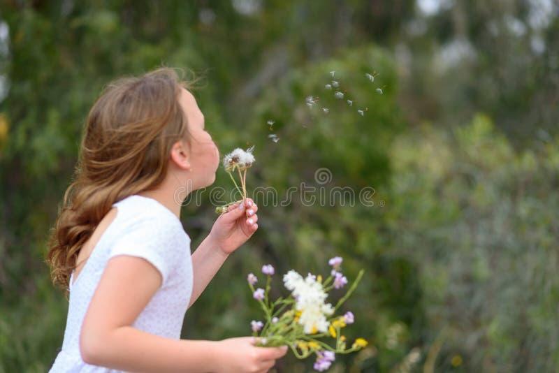 Nastolatek dziewczyny podmuchowy dandelion zdjęcia royalty free
