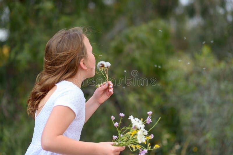 Nastolatek dziewczyny podmuchowy dandelion fotografia stock