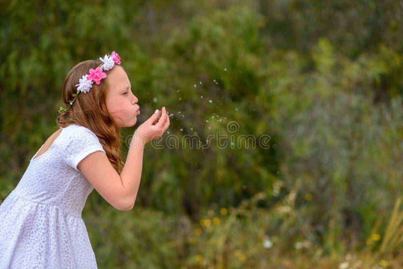 Nastolatek dziewczyny podmuchowy dandelion obraz stock