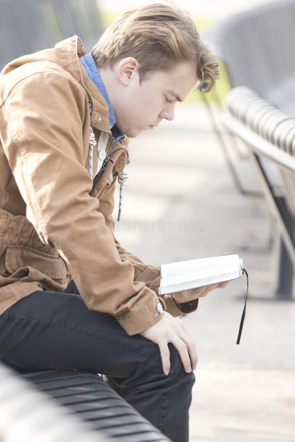 Nastolatka obsiadanie na ławki czytelniczej biblii obraz stock