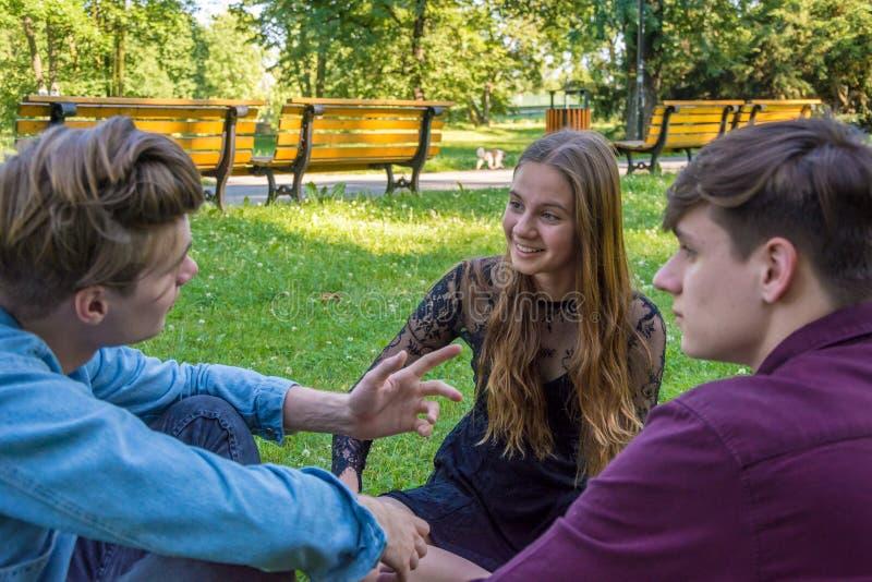 Nastolatkowie gawędzi w parkowym obsiadaniu w trawie zdjęcia royalty free