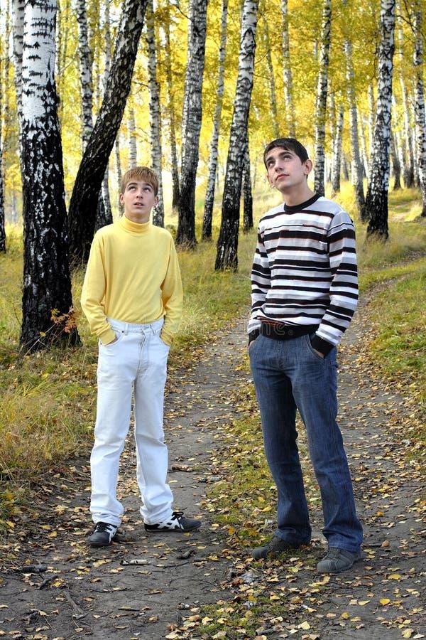 Nastoletni chłopacy plenerowi zdjęcia stock