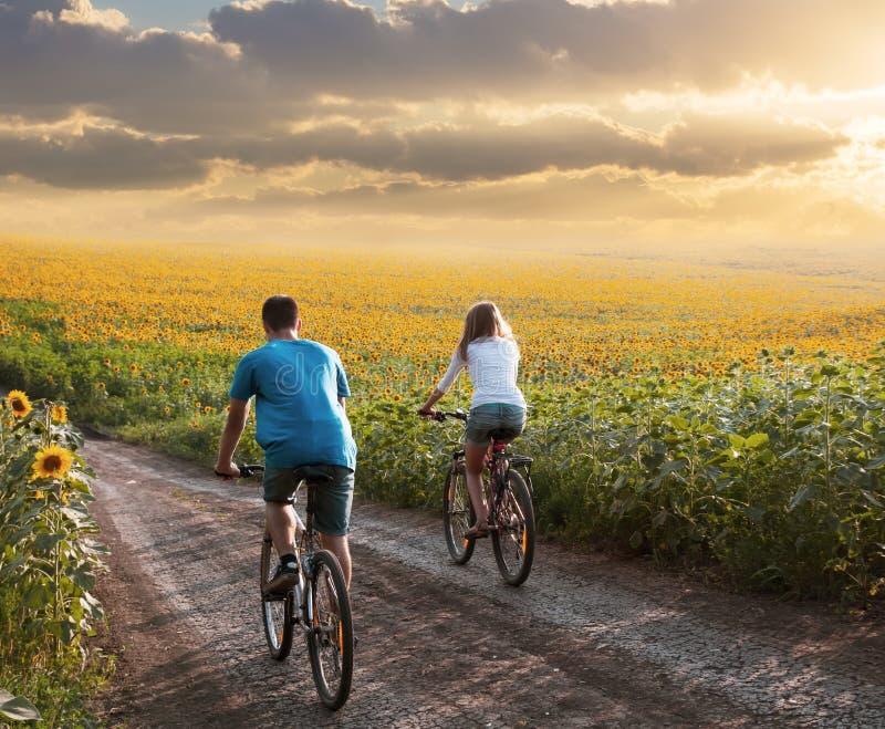 Nastoletni pary jazdy rower w słonecznika polu zdjęcia royalty free