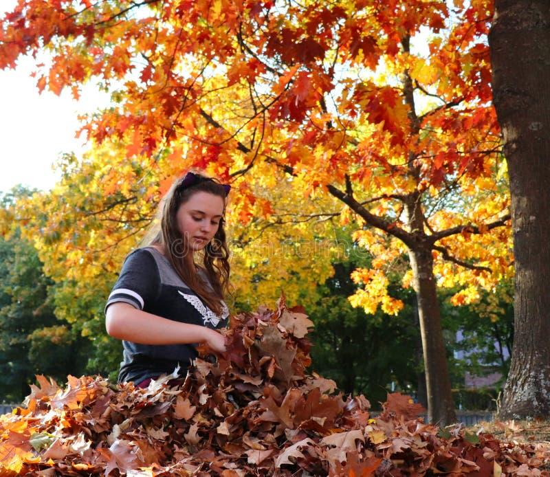 Nastoletnia dziewczyna bawić się w liściach w Niemcy zdjęcie royalty free