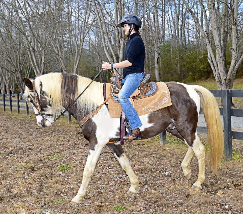 Nastoletnia Dziewczyna Jeździecki koń fotografia royalty free