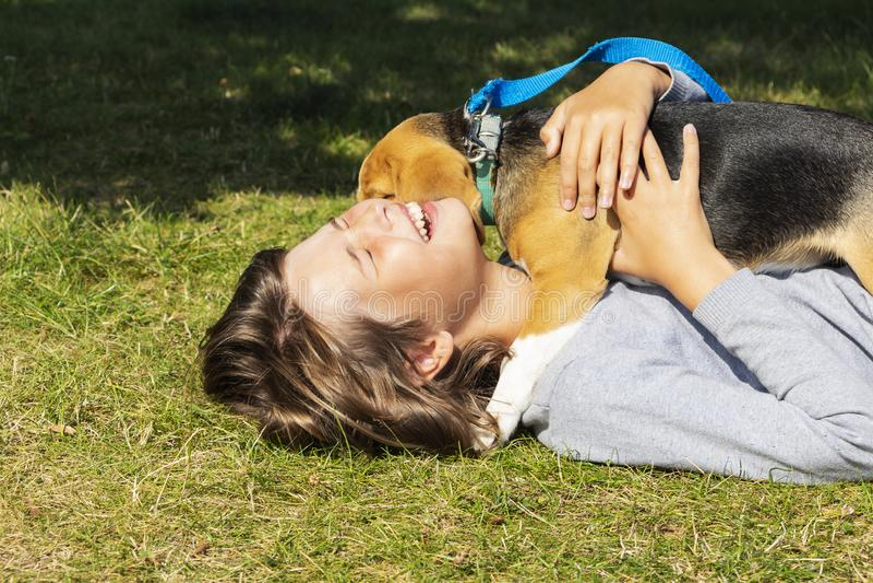 Nastoletnia dziewczyna z psem, pies liże jej twarz obrazy stock
