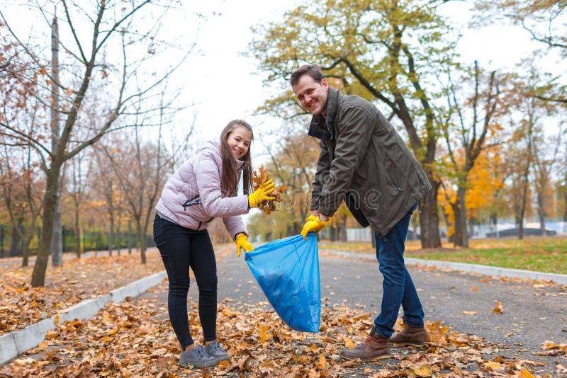Nastoletnia dziewczyna z tata czyści w parku, zbiera spadać ulistnienie w torba na śmiecie fotografia royalty free