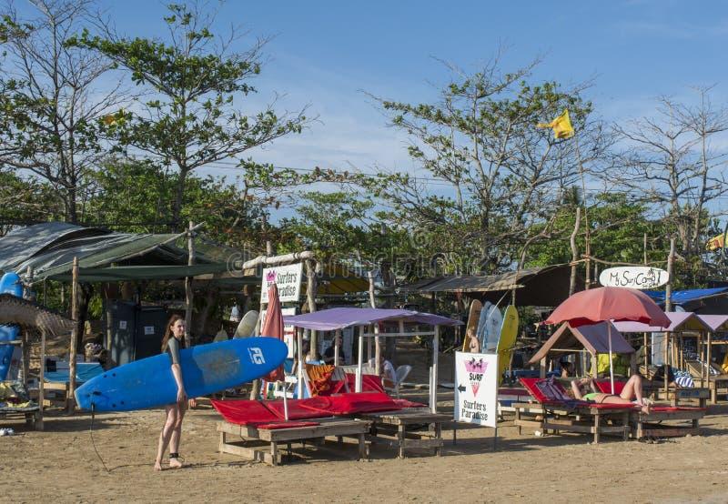 Nastoletnia surfingowa mienia surfingu deska przy plażą zdjęcie royalty free