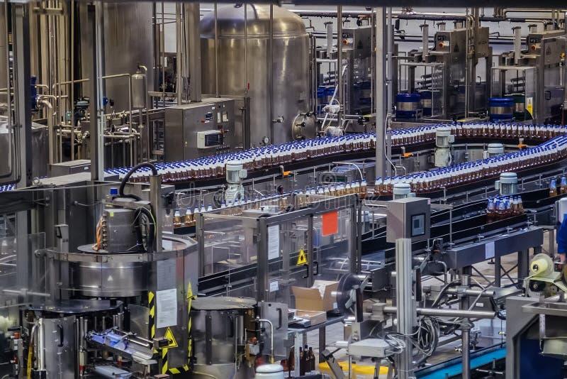 Nastro trasportatore della linea di produzione della fabbrica di birra Le bottiglie di birra stanno passando il trasportatore immagine stock