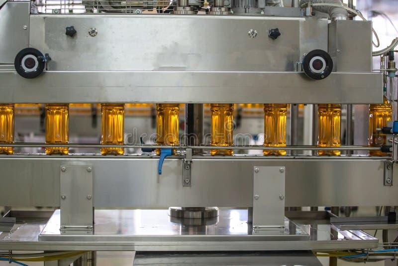 Nastro trasportatore o linea nella pianta della bevanda con l'attrezzatura industriale automatizzata moderna della macchina Botti fotografia stock libera da diritti