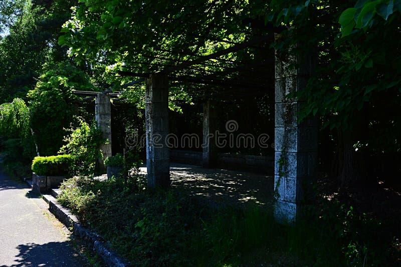 Nastroszony taras z kamiennymi kolumnami i drewnianym dachem dla wspinać się rośliny w Japońskim pawilonie arboretum Mlynany, Sis fotografia stock