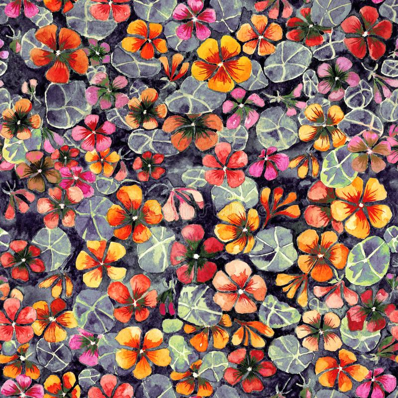 Nasturtium flowers with leaves on dark background. Seamless vintage pattern. Watercolor painting. Hand drawn illustration. Can be used as a floral background vector illustration